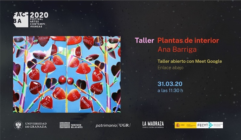 Ana Barriga. Plantas de interior. Taller
